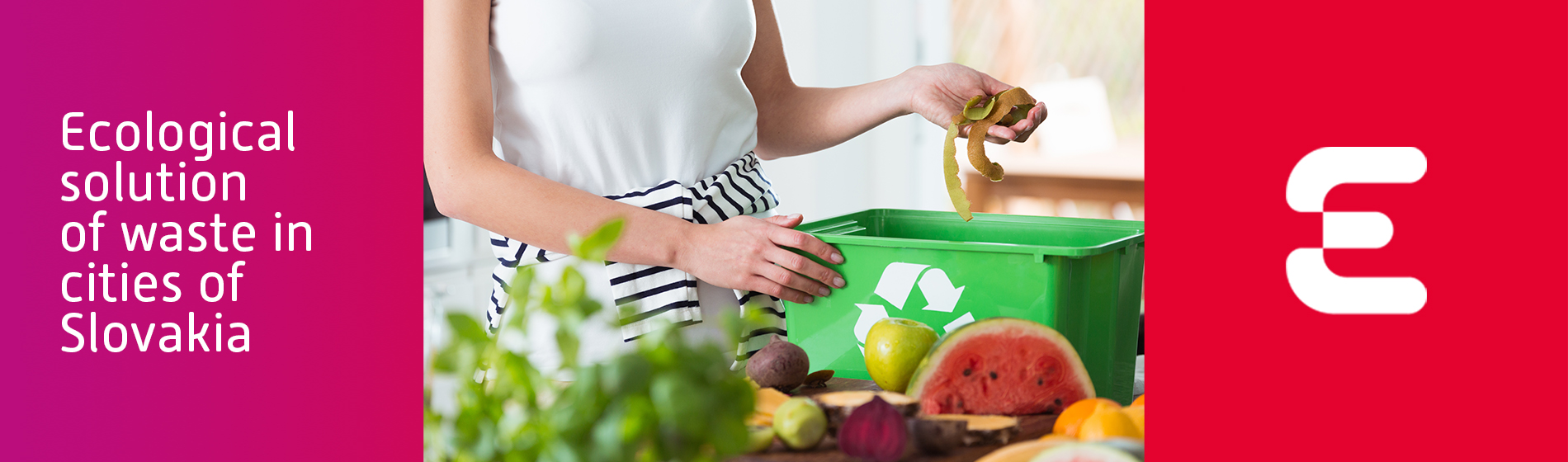 Ecological solution of waste in cities of Slovakia